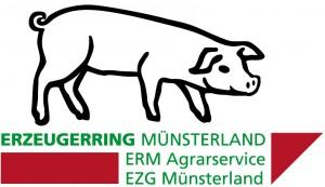 logo_erm